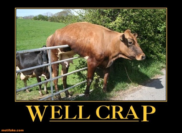 well-crap-cow-fence