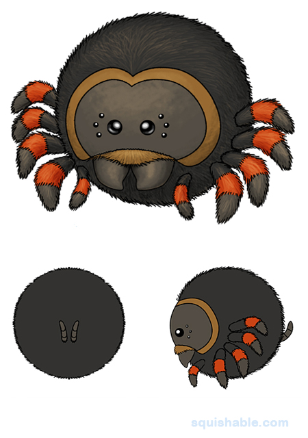 opensquish_tarantula_34114